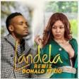 donald ft cici - landela remix