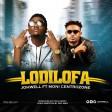 johwell ft moni centralzone - lodilofa