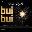 Steve-RNB - BuiBui