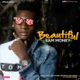 sam money - beautifui