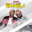 young subwa ft galatone - shamela