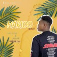 malisam ft aslay - marioo remix