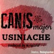 Canis major - usiniache
