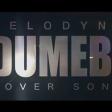 Rema Dumebi Cover By Melodyne