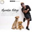 Matonya - Nyumba Ndogo