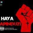 Kapuku Digital _HAYA MAPINDUZI (www.machaliiwakaskazini.blogspot.com)