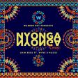 Chin Bees Ft Wyre & Nazizi - Nyonga Nyonga Remix