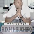 A.D.M Nguchiro - WAPI ULIPO