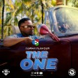 Tommy Flavour - THE ONE