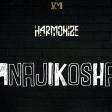 Harmonize - Anajikosha